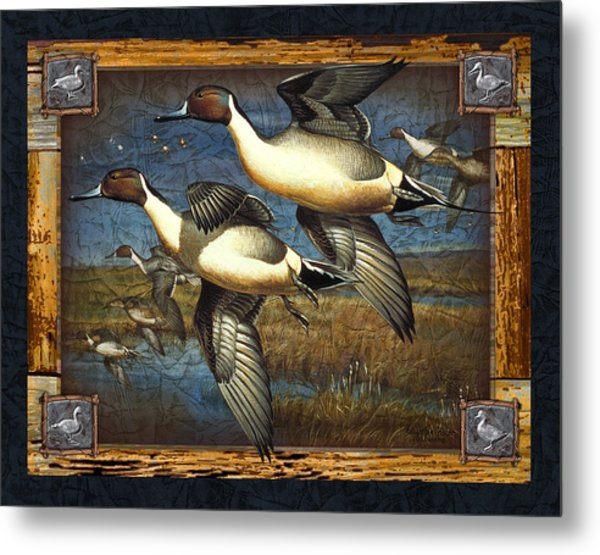 Deco Pintail Ducks Metal Print