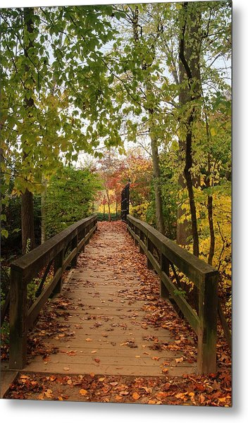 Decorate With Leaves - Holmdel Park Metal Print
