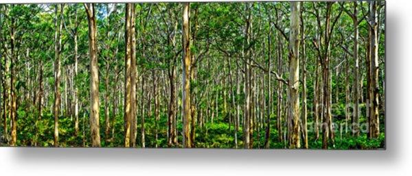 Deep Forest Metal Print