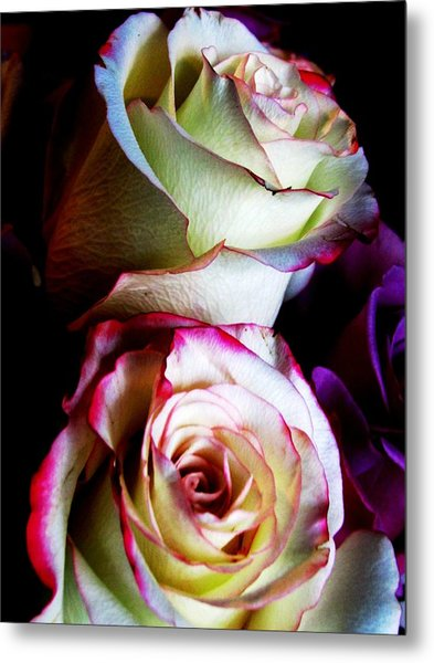 Deep Pink Metal Print by Will Boutin Photos