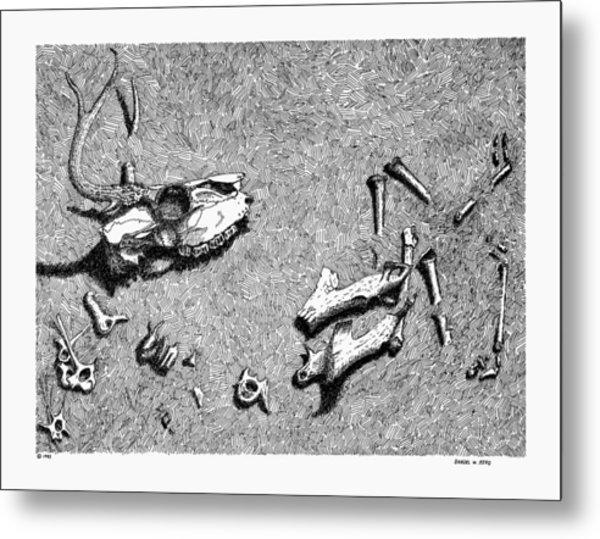 Deer Bones Metal Print