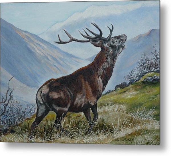 Deer Country Metal Print by Val Stokes