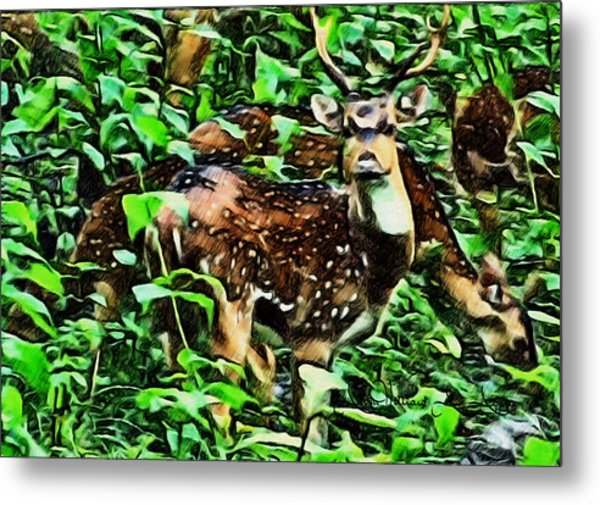 Deer's Green Day Metal Print