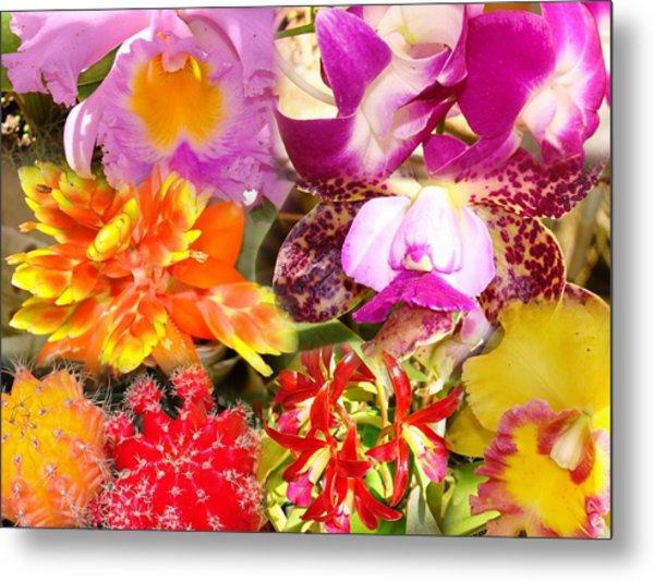 Delicate And Rustic Flowers Metal Print by Van Ness