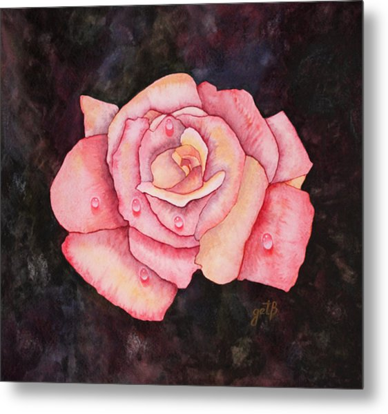 Delicate Pink Rose With Water Droplets Original Watercolor Painting Metal Print