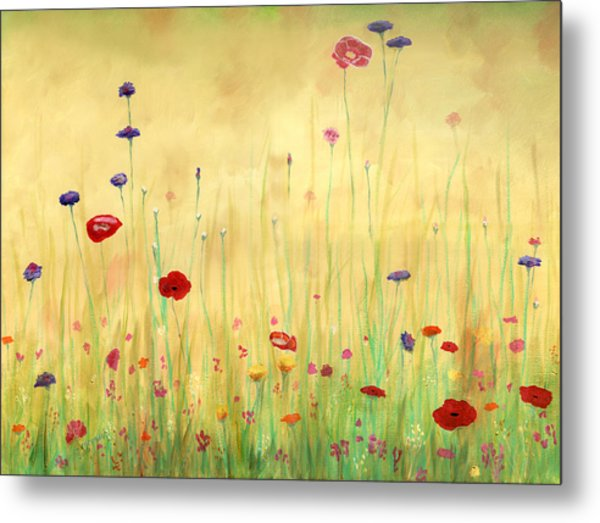 Delicate Poppies Metal Print by Cecilia Brendel