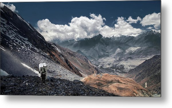 Delivery Of Refrigerator, Himalayas Metal Print