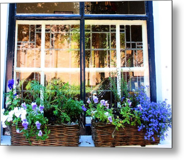 Delt Blue Windows Metal Print