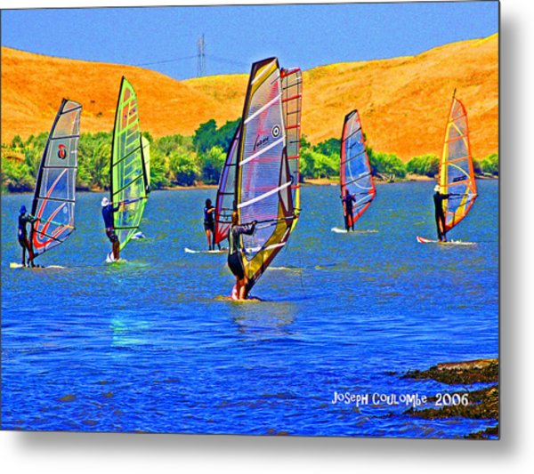 Delta Water Wings Metal Print