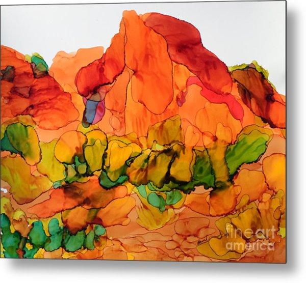 Desert Beauty 6 Metal Print
