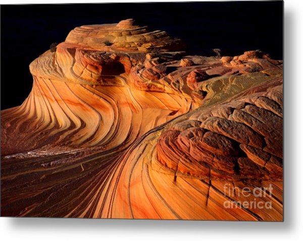 Desert Delight Metal Print