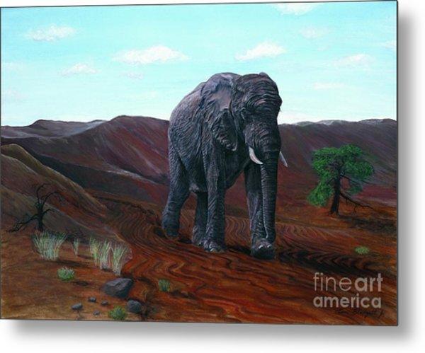 Desert Elephant Metal Print