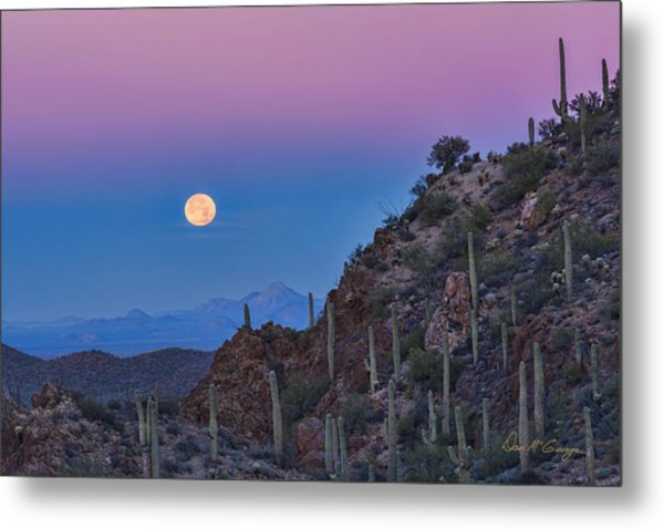 Desert Moonset Metal Print