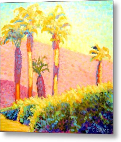 Desert Morning Palms Metal Print by Craig  Bruce