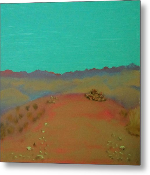 Desert Overlook Metal Print