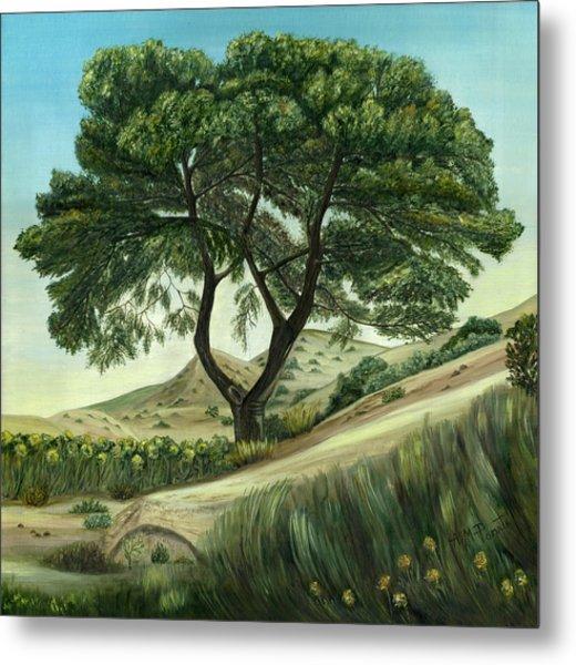 Desert Pine Metal Print