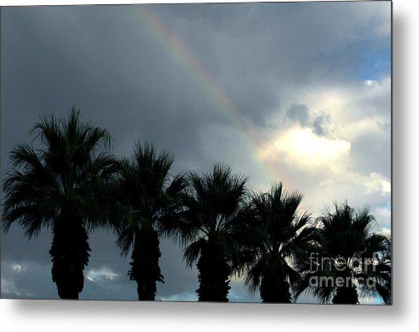 Desert Rainbow Metal Print by Deborah Smolinske