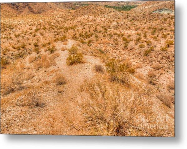 Desert Reds Metal Print by Deborah Smolinske