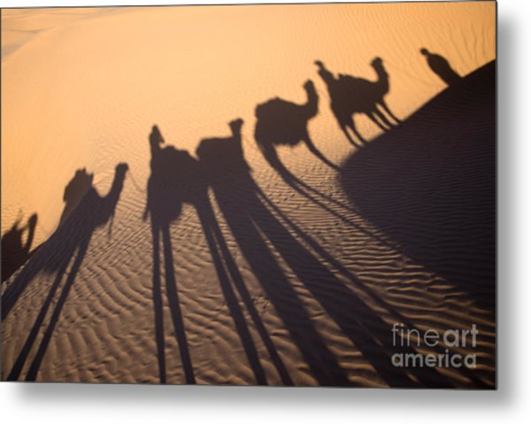 Desert Shadows Metal Print