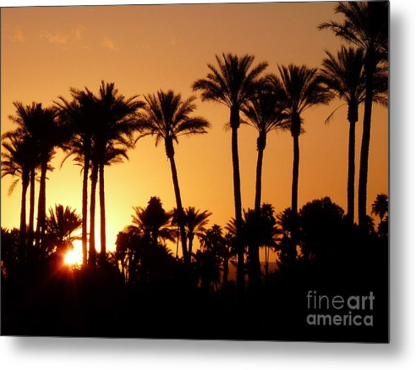 Desert Silhouette Sunrise Metal Print by Deborah Smolinske