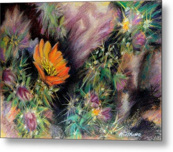 Desert Spring Impression Of   Pastel Metal Print