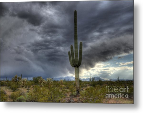Desert Storm Arizona 1 Metal Print