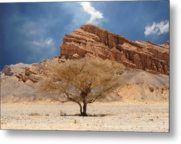 Desert Tree And Mountains Metal Print