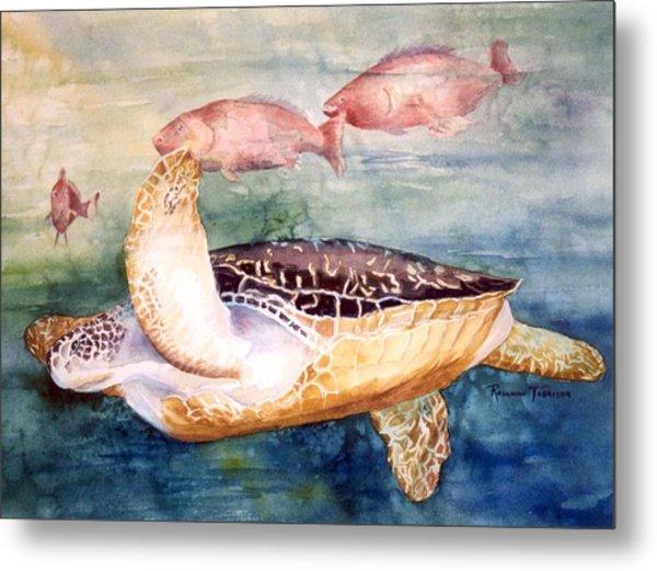 Determined - Loggerhead Sea Turtle Metal Print