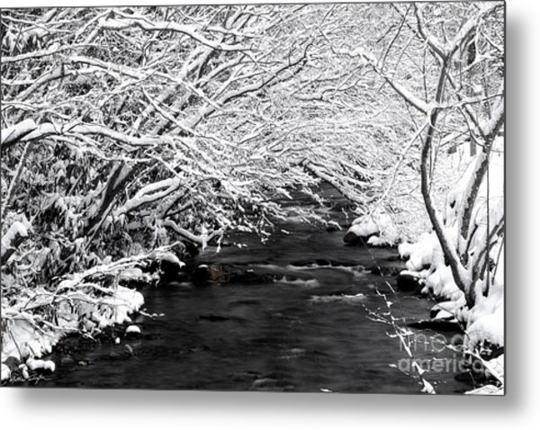 Dick's Creek Snow 2014 Metal Print