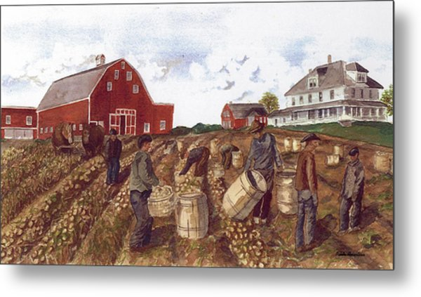 Metal Print featuring the painting Digging In The '40's by Paula Robertson