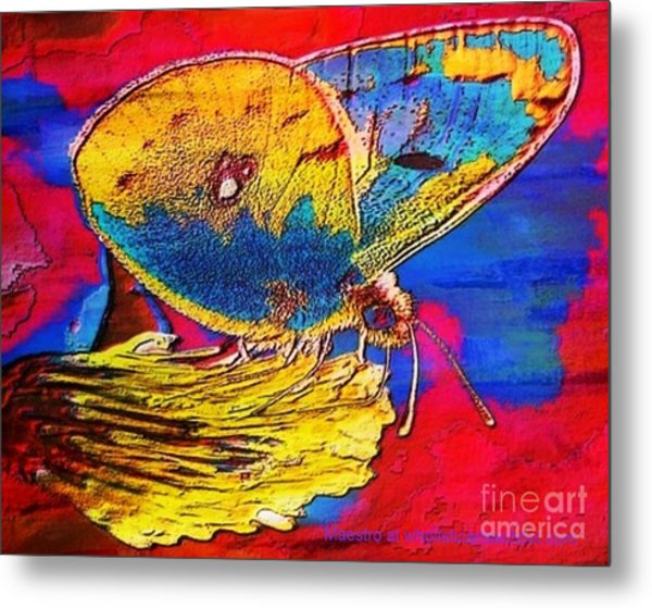 Digital Mixed Media Butterfly Metal Print