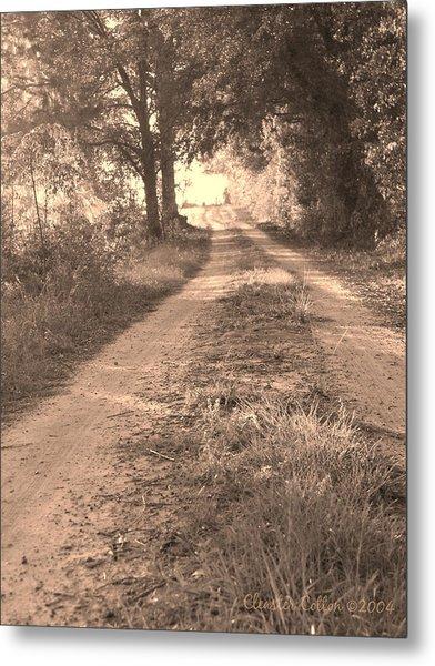 Dirt Road In Moultrie Georgia Metal Print