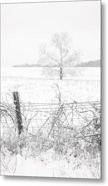 Distant Tree Metal Print
