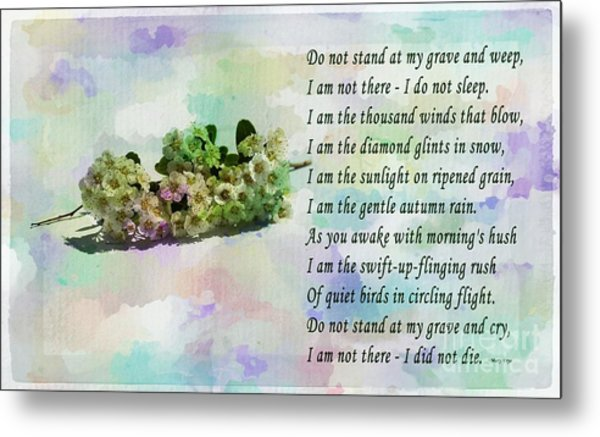 Do Not Stand At My Grave And Weep Metal Print