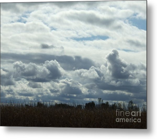 Do You See What I See In The Clouds. Metal Print