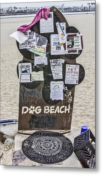 Dog Beach  Metal Print by Photographic Art by Russel Ray Photos