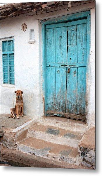 Dog Resting Outside A House, Jojawar Metal Print
