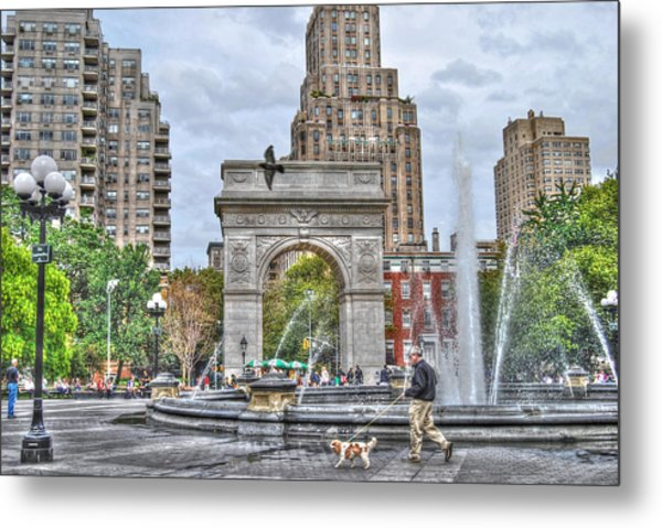 Dog Walking At Washington Square Park Metal Print