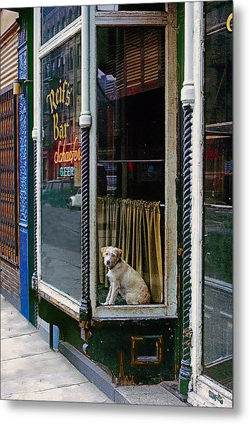 Doggy In The Window Version - 4 Metal Print