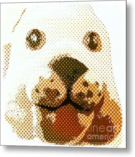 Dogs Head Metal Print