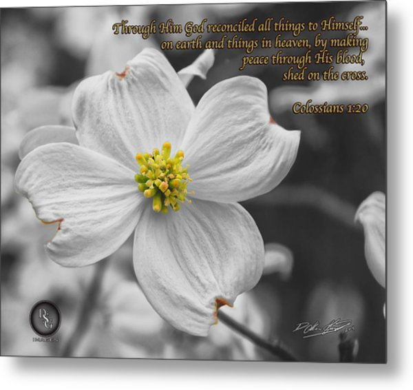 Dogwood Bloom Metal Print