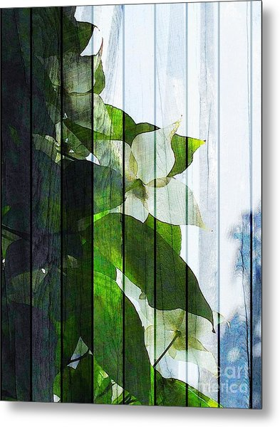 Dogwood Shades Metal Print
