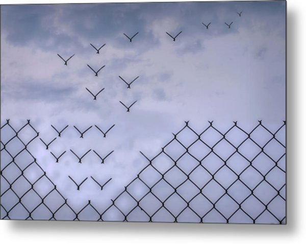 Dona??t Fence Me In! Metal Print