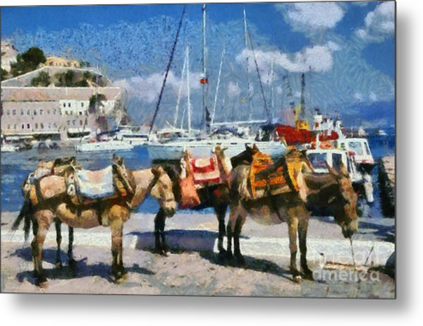 Donkeys Waiting For A Ride Metal Print