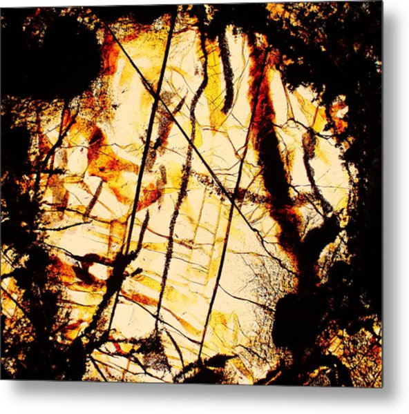 Door Of Perception Metal Print