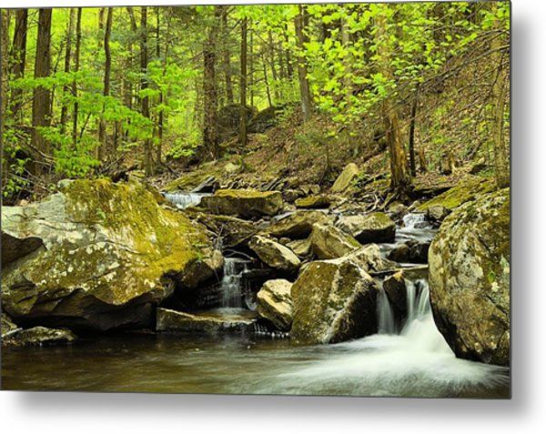 Double Run #2 - Worlds End State Park Metal Print