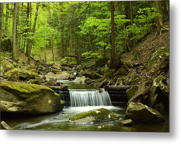 Double Run #1 - Worlds End State Park Metal Print