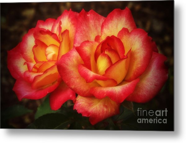 Double The Delight Metal Print