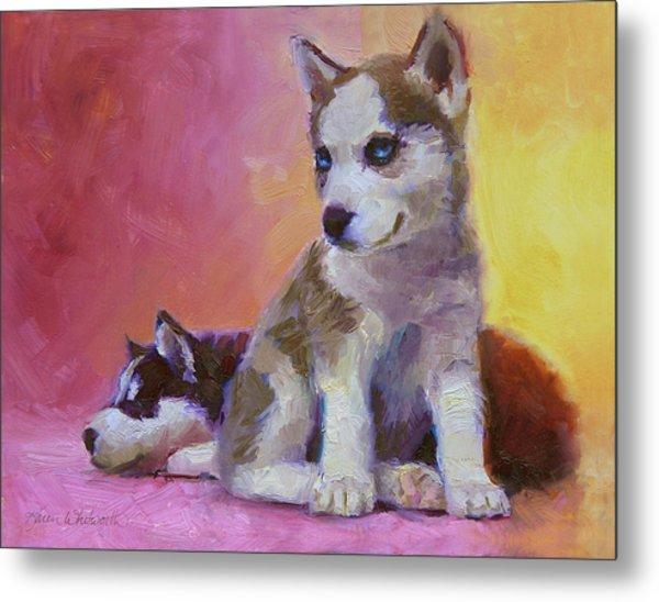 Double Trouble - Alaskan Husky Sled Dog Puppies Metal Print