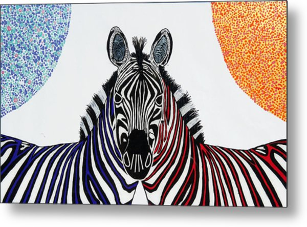 Double Zebra Metal Print by Patrick OLeary